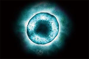 ヒト幹細胞培養液イメージ